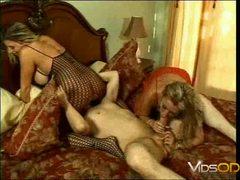 Cocksucker Moms